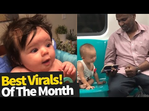 Top 40 Viral Videos Of the Month - June 2019