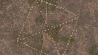 This Google Maps Mystery Still Has Investigators Stumped