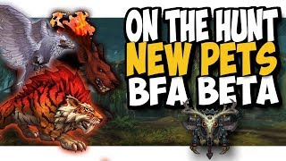 NEW PETS IN BATTLE FOR AZEROTH!! On The Hunt Exotic and other pets