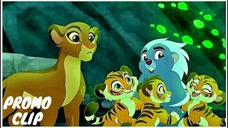 Tigress Varriya Request To Queen Rani Official TV Promos (NEW 2019) Animation HD
