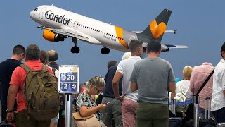 How will the Thomas Cook collapse affect my next holiday?
