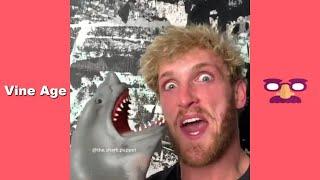 Funny Shark Puppet Compilation | Best Video of Shark Puppet | September 2019