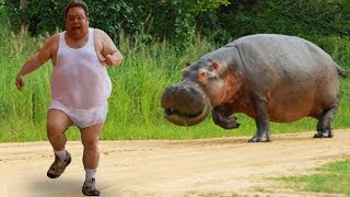 Funniest Animals Scaring People Reactions of 2019 Weekly Compilation 🐢🐪🐏🐍 Funny Pet Videos