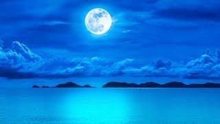 Sleep Music 24/7, Healing Music, Calming Music, Sleep Meditation, Relaxing Music, Study Music, Sleep
