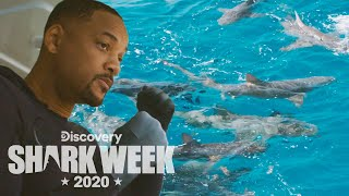 Will Smith Prepares to Dive with Sharks! | Shark Week