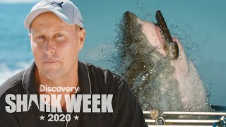 Filming the Legendary Hornet Breach | Shark Week