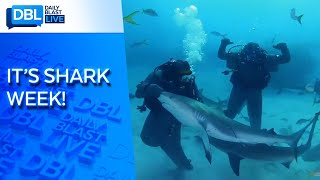 "Mike Tyson ""Knocks Out"" Shark for Shark Week 2020"