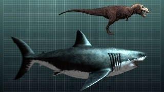 The Nightmarish Megalodon   Sharkzilla -- Shark Week