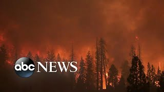 ABC News Live Update: Huge wildfires in western US