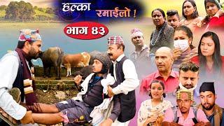 Halka Ramailo   Episode 43   06 September 2020   Balchhi Dhrube, Raju Master   Nepali Comedy