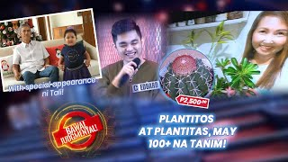 Plantitos at Plantitas na may 100+ na Tanim! | Bawal Judgmental | September 23, 2020