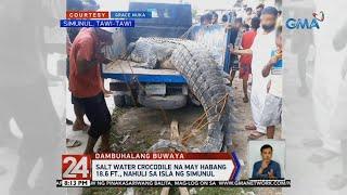 24 Oras: Higanteng salt water crocodile, nahuli sa isla ng Simunul, Tawi-Tawi