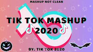 Tik Tok Mashup 2020 November💟Not Clean💟