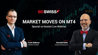 BDSwiss Co-hosted Webinar: US elections in focus | 2/11/2020