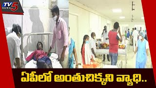 ఏపీలో వింత వ్యాధి.. | Eluru Incident Updates | Health Issues | CM Jagan | AP News | TV5 News