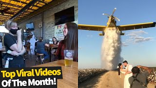 Top 50 Best Viral Videos Of The Month - October 2020