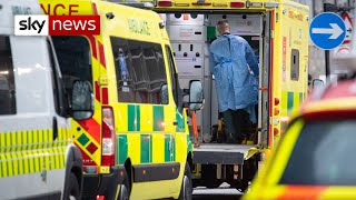 COVID-19: UK records 1,041 deaths in a single day
