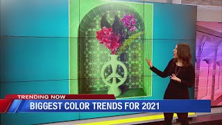 TRENDING: 2021 Color Trends