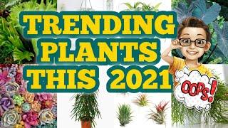 Trending Plants This 2021 (Names/Kinds/Varieties) #trendingplants2021 #houseplants