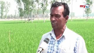 Bangla News Update | 12.30 PM | 25 March 2021 | Mytv News