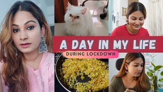 Living Alone With My Cat In The Pandemic   Staying Positive, Cooking & Studying   DesiGirl Traveller