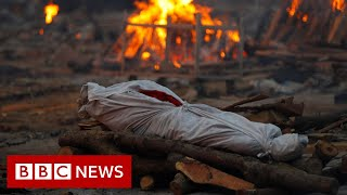 India records highest daily Covid death toll as virus engulfs country - BBC News