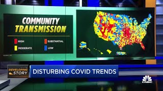 Where the Covid delta variant has its highest transmission rates in the U.S.